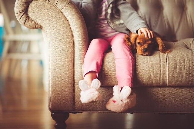Dziewczynka siedzi na kanapie z pieskiem