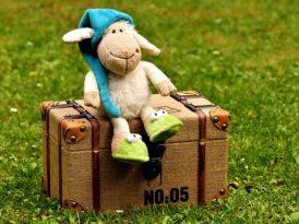 Zabawki wyszukane, z duszą, unikalne! Wyjątkowe zabawki na Patalonia, Mamissima, Bamadoo