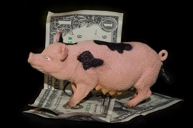 Pieniądze oszczędzanie ubezpieczenie